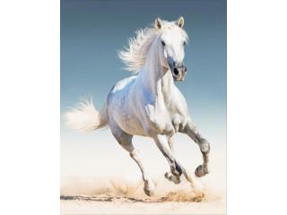 """Алмазная выкладка """"Белая лошадь"""" 40х50"""