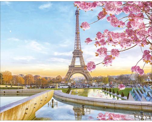 """Алмазная выкладка """"Цветущий Париж"""" 40х50"""