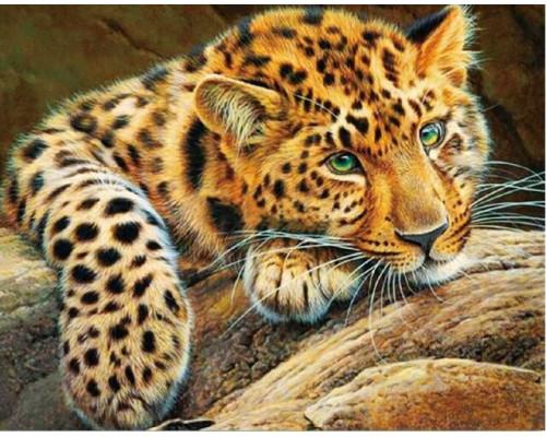 Алмазная вышивка Африканский леопард 40х50