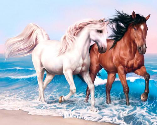 Алмазная вышивка Пара лошадей 40х50