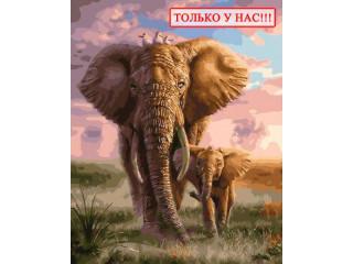 """Картина по номерам """"Слон и слоненок"""" 40х50"""