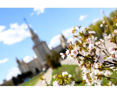Отдушка, Весна