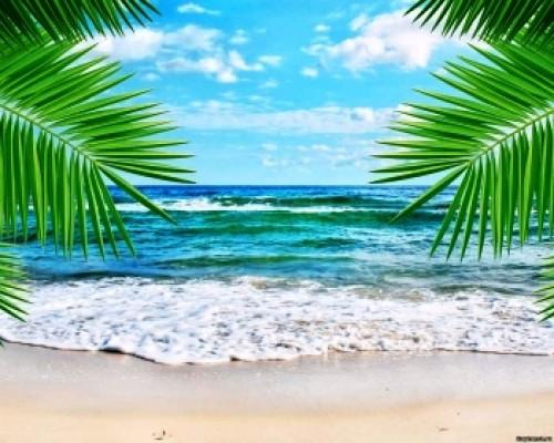 Отдушка, Тропический прибой