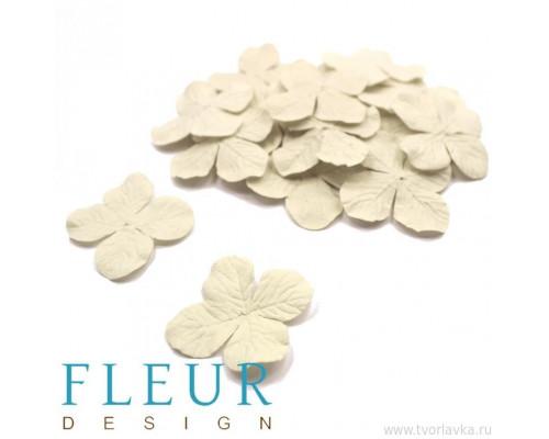 Гортензия средняя Кремовая, размер цветка 3,5 см, 20 шт