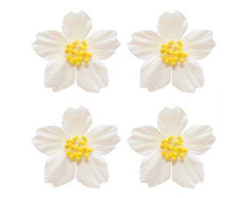 Набор цветов франжепани белые, 4 шт